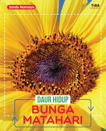 Daur Hidup: Bunga Matahari